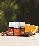 Festive essential oils and Shareable Rewards!